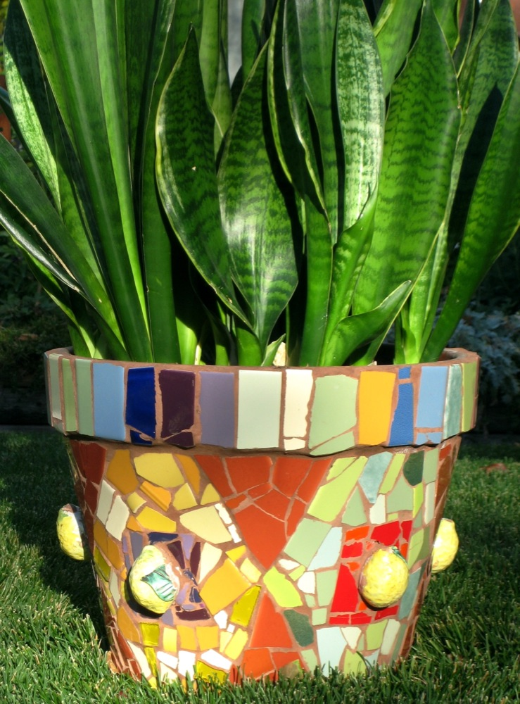 "Planter Pot    10"" diameter"